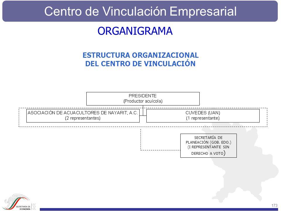 ESTRUCTURA ORGANIZACIONAL DEL CENTRO DE VINCULACIÓN