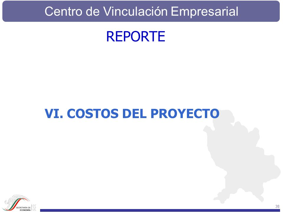 REPORTE VI. COSTOS DEL PROYECTO
