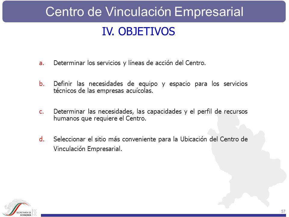 IV. OBJETIVOS Determinar los servicios y líneas de acción del Centro.