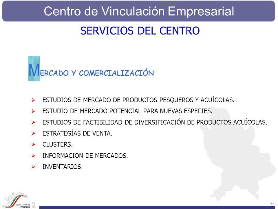 M SERVICIOS DEL CENTRO ERCADO Y COMERCIALIZACIÓN