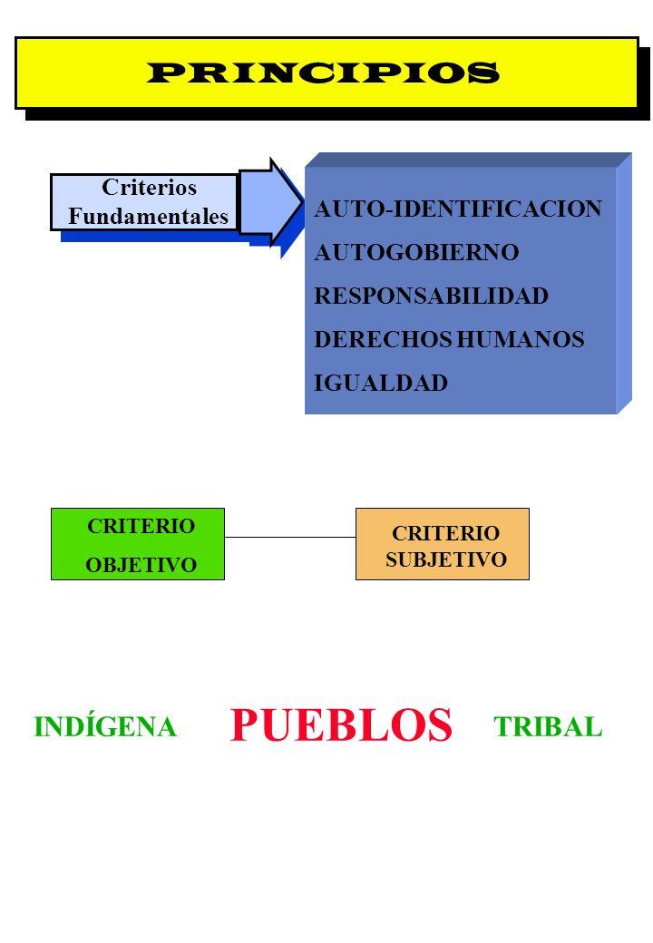 Criterios Fundamentales