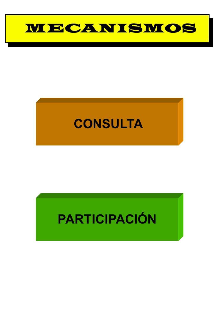 MECANISMOS CONSULTA PARTICIPACIÓN