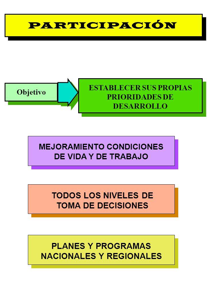 PARTICIPACIÓN TODOS LOS NIVELES DE TOMA DE DECISIONES