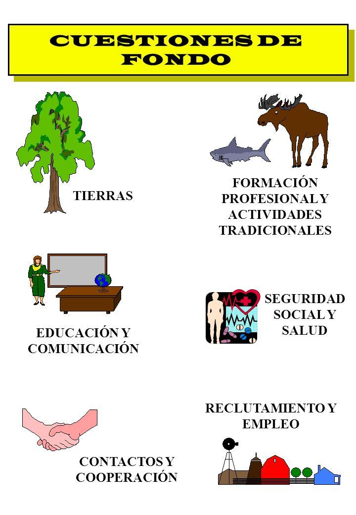 CUESTIONES DE FONDO FORMACIÓN PROFESIONAL Y ACTIVIDADES TRADICIONALES