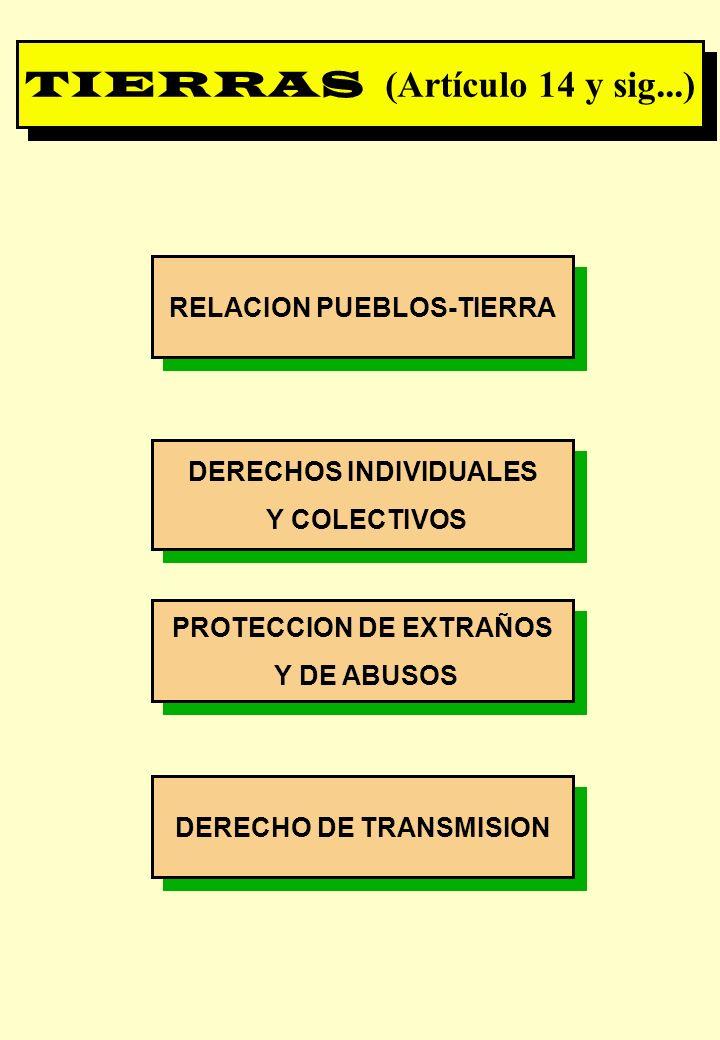 TIERRAS (Artículo 14 y sig...)