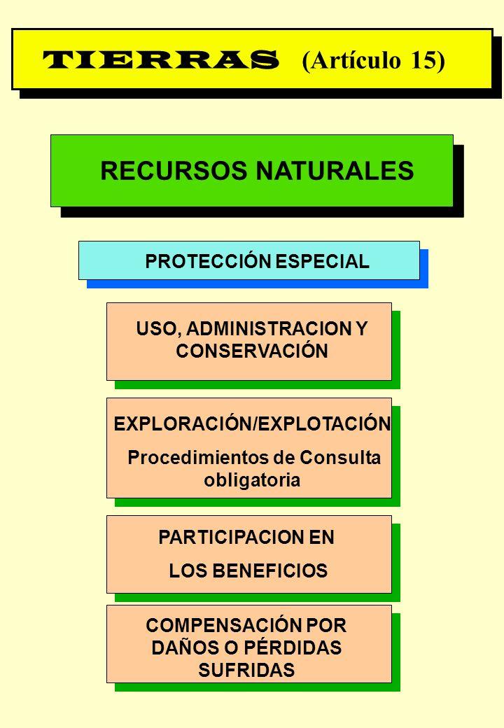 TIERRAS (Artículo 15) RECURSOS NATURALES PROTECCIÓN ESPECIAL