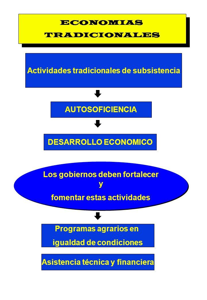 Actividades tradicionales de subsistencia
