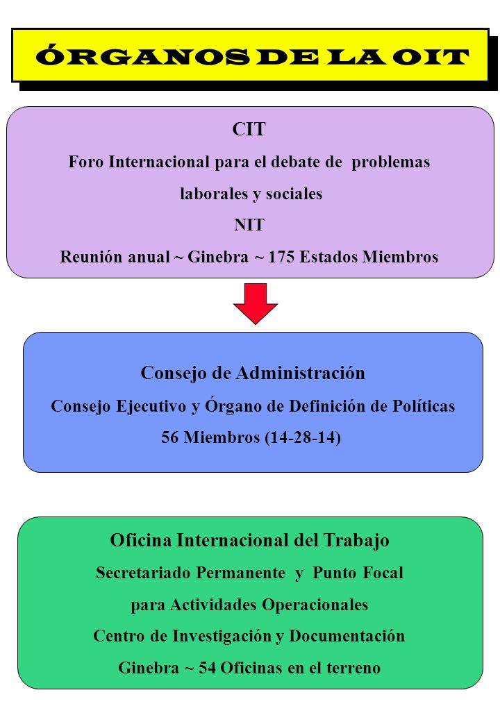 ÓRGANOS DE LA OIT CIT Consejo de Administración