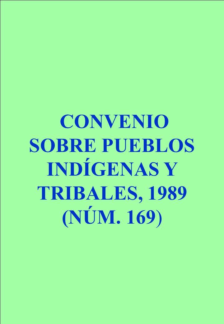 CONVENIO SOBRE PUEBLOS INDÍGENAS Y TRIBALES, 1989 (NÚM. 169)