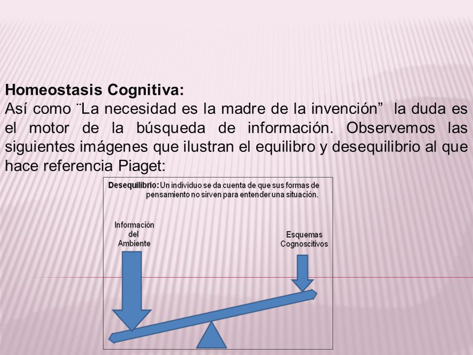 Homeostasis Cognitiva: