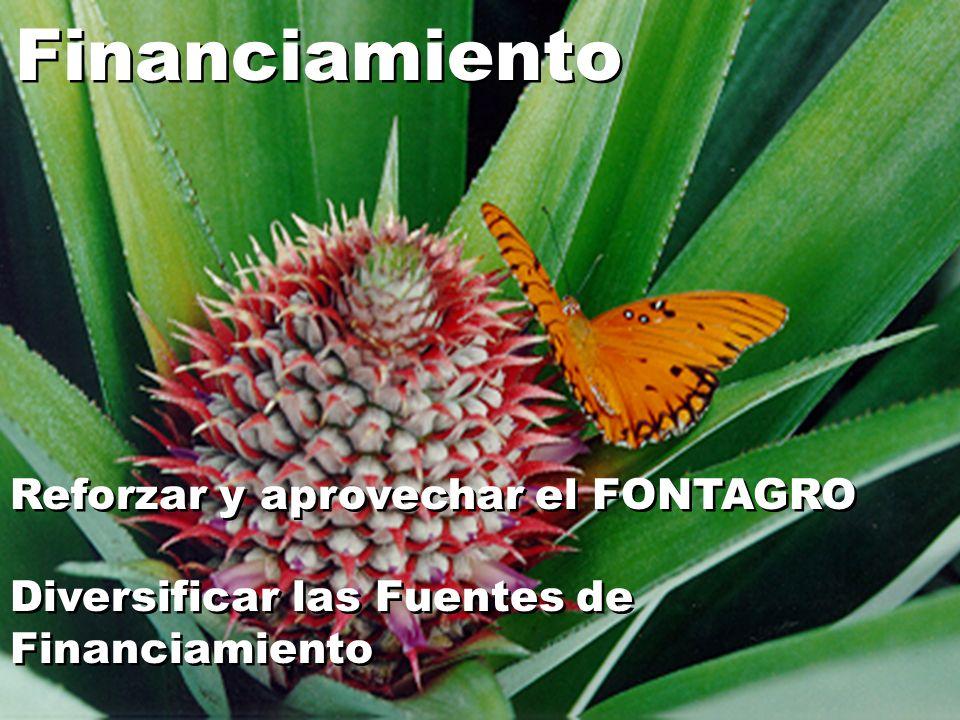 Financiamiento Reforzar y aprovechar el FONTAGRO