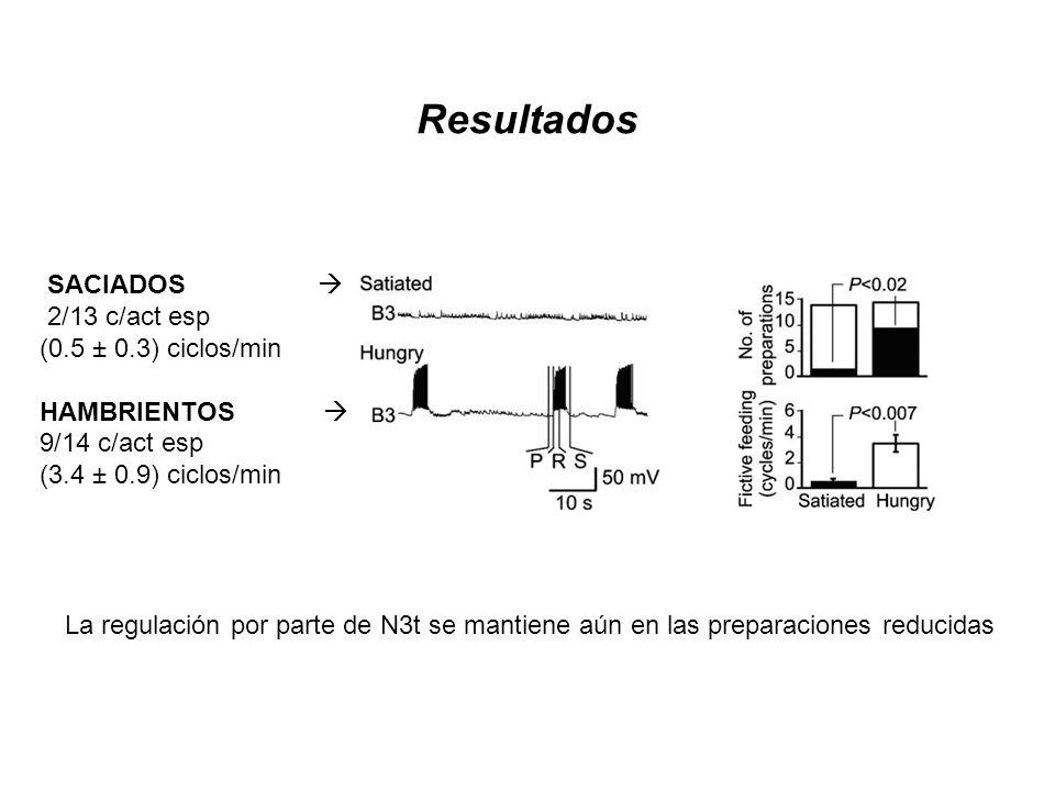 Resultados SACIADOS  2/13 c/act esp (0.5 ± 0.3) ciclos/min
