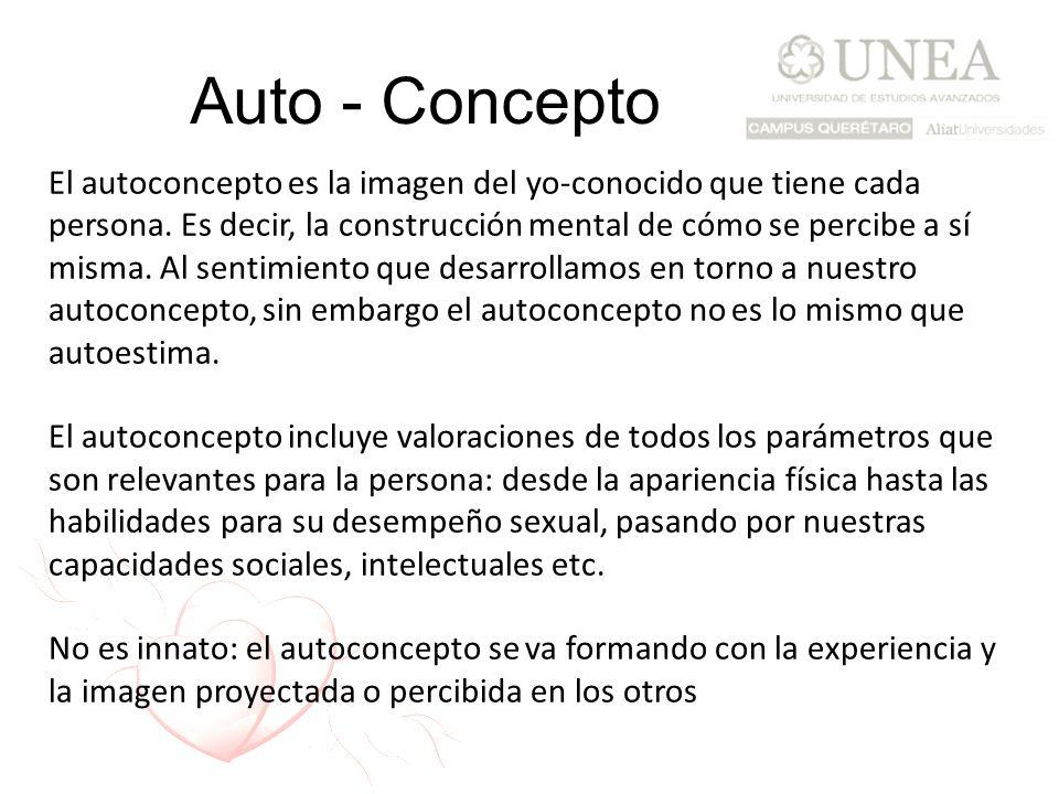Auto - Concepto