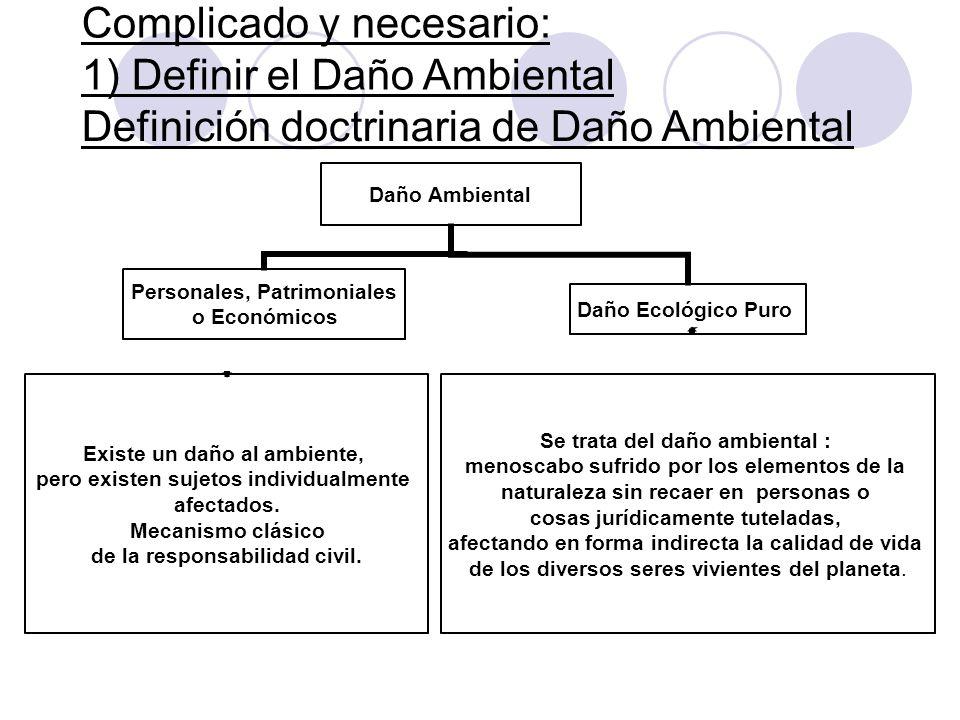Complicado y necesario: 1) Definir el Daño Ambiental