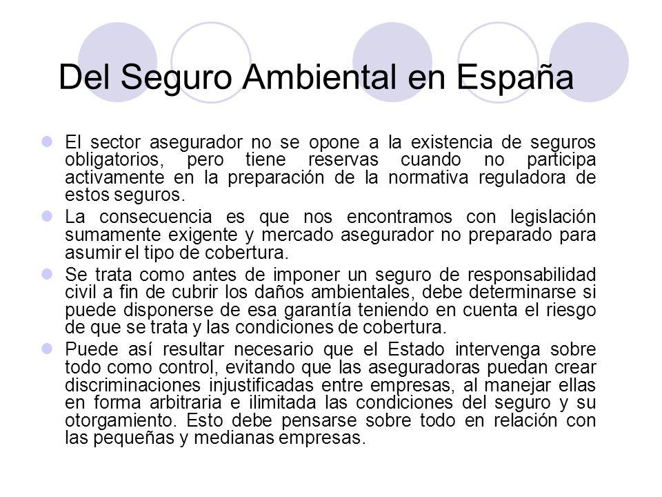Del Seguro Ambiental en España