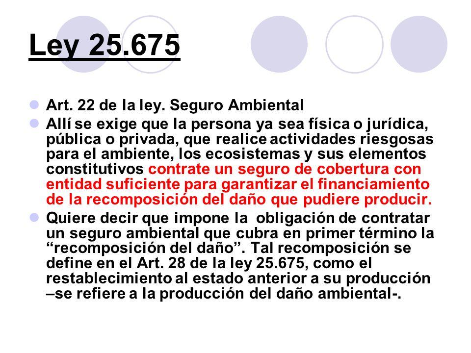 Ley 25.675 Art. 22 de la ley. Seguro Ambiental