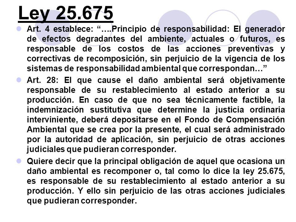 Ley 25.675