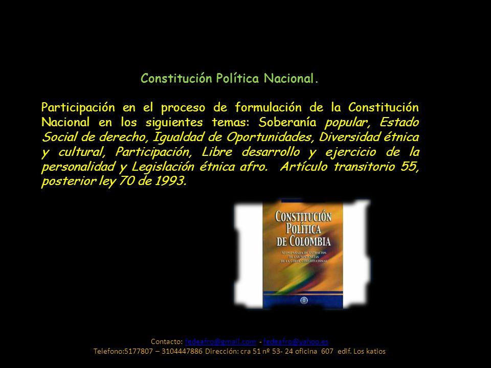 Constitución Política Nacional.