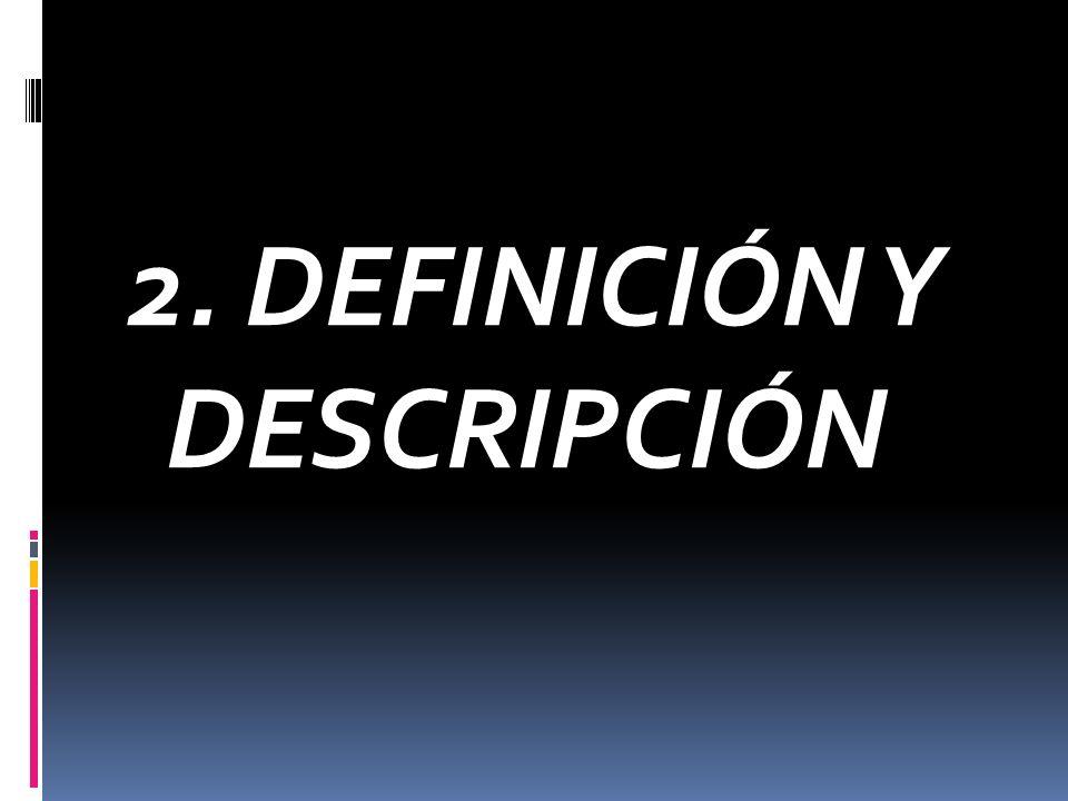 2. DEFINICIÓN Y DESCRIPCIÓN