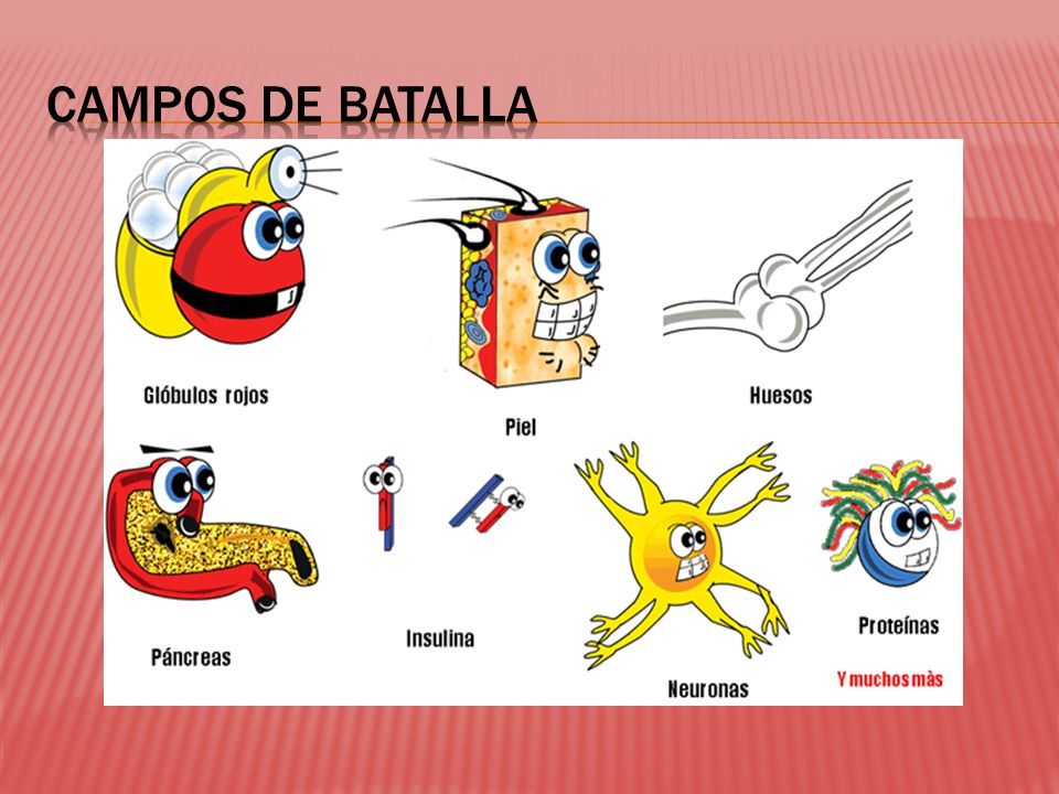 CAMPOS DE BATALLA