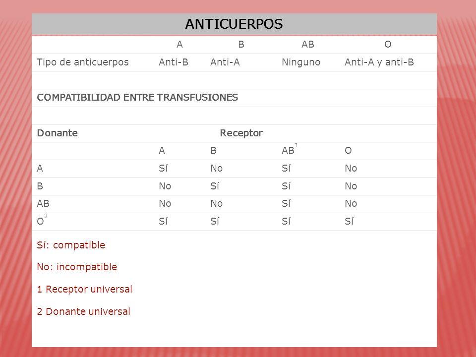 ANTICUERPOS A B AB O Tipo de anticuerpos Anti-B Anti-A Ninguno