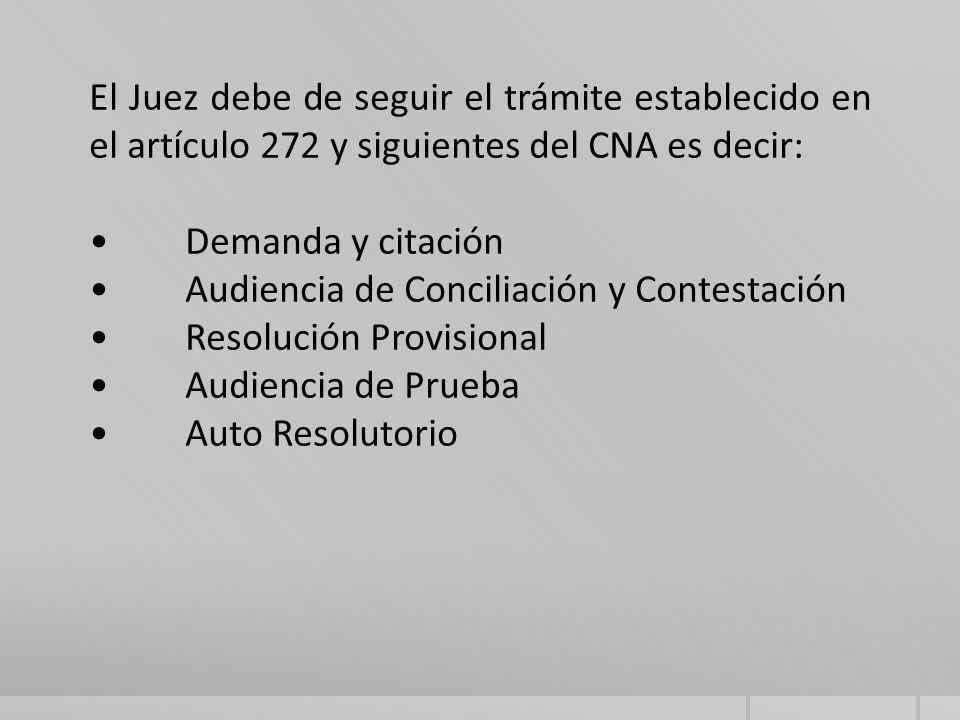 El Juez debe de seguir el trámite establecido en el artículo 272 y siguientes del CNA es decir: