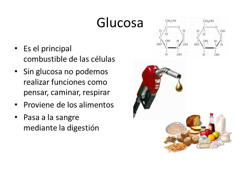 Glucosa Es el principal combustible de las células