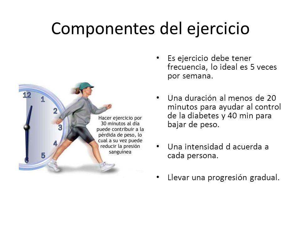 Componentes del ejercicio