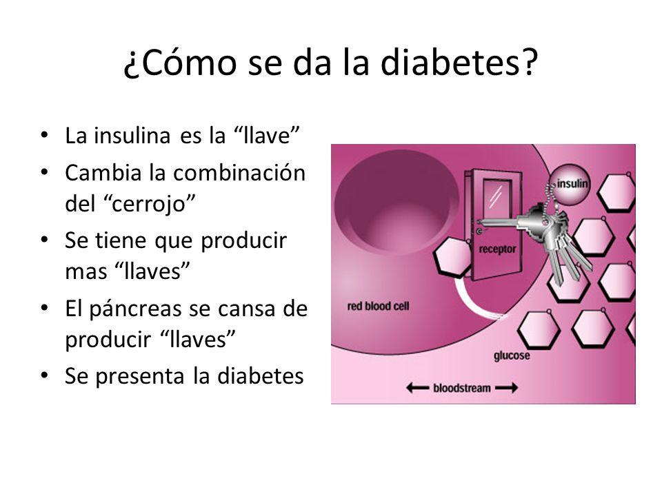 ¿Cómo se da la diabetes La insulina es la llave