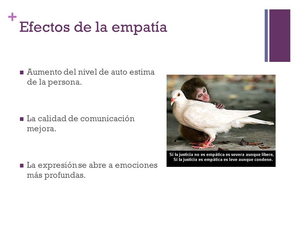Efectos de la empatía Aumento del nivel de auto estima de la persona.