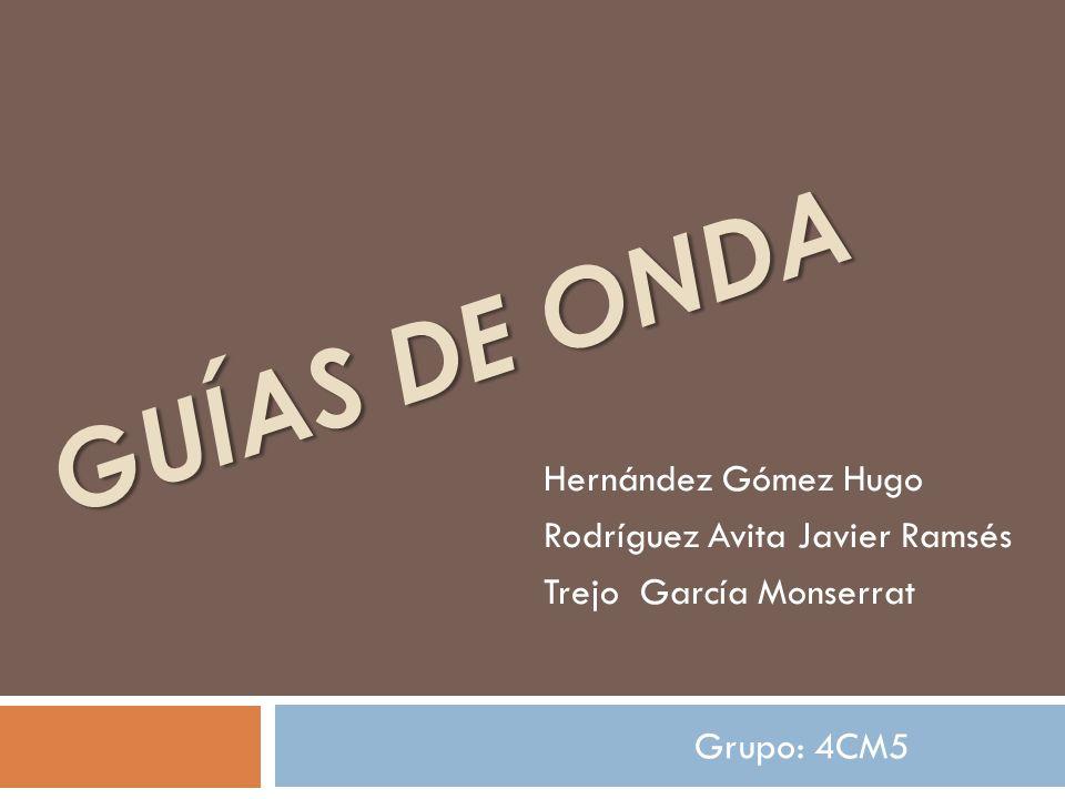 Guías de onda Hernández Gómez Hugo Rodríguez Avita Javier Ramsés