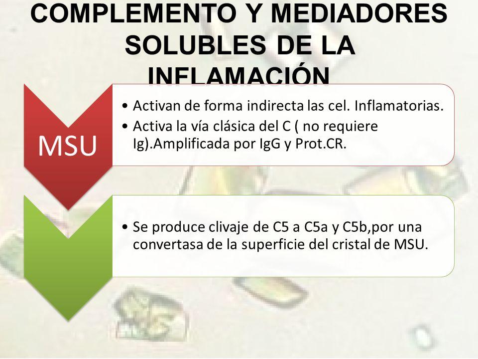 COMPLEMENTO Y MEDIADORES SOLUBLES DE LA INFLAMACIÓN