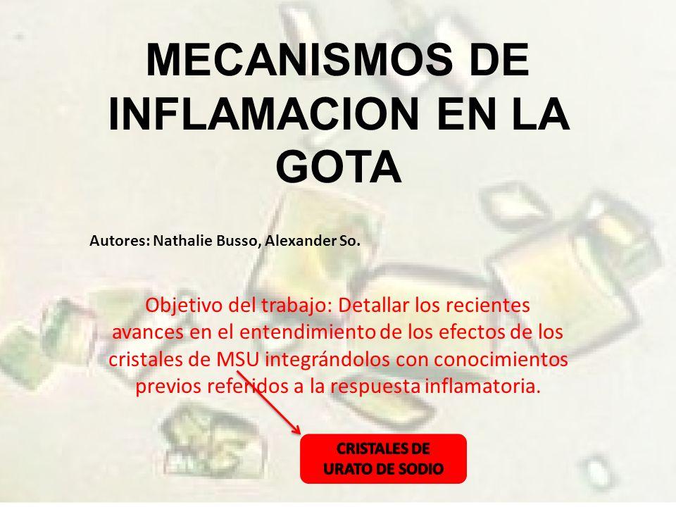 MECANISMOS DE INFLAMACION EN LA GOTA