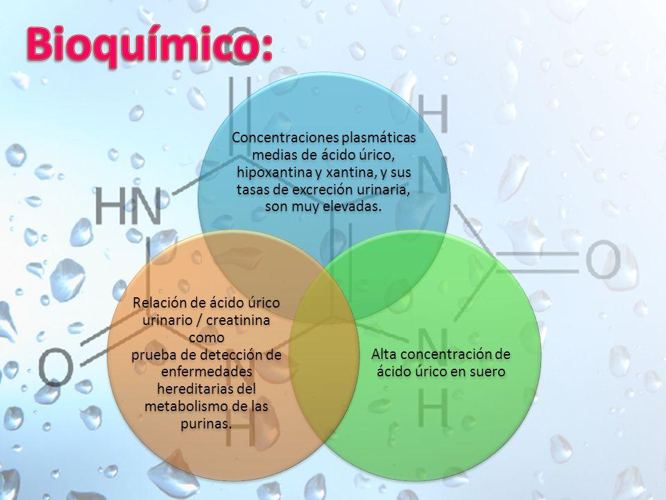 Alta concentración de ácido úrico en suero