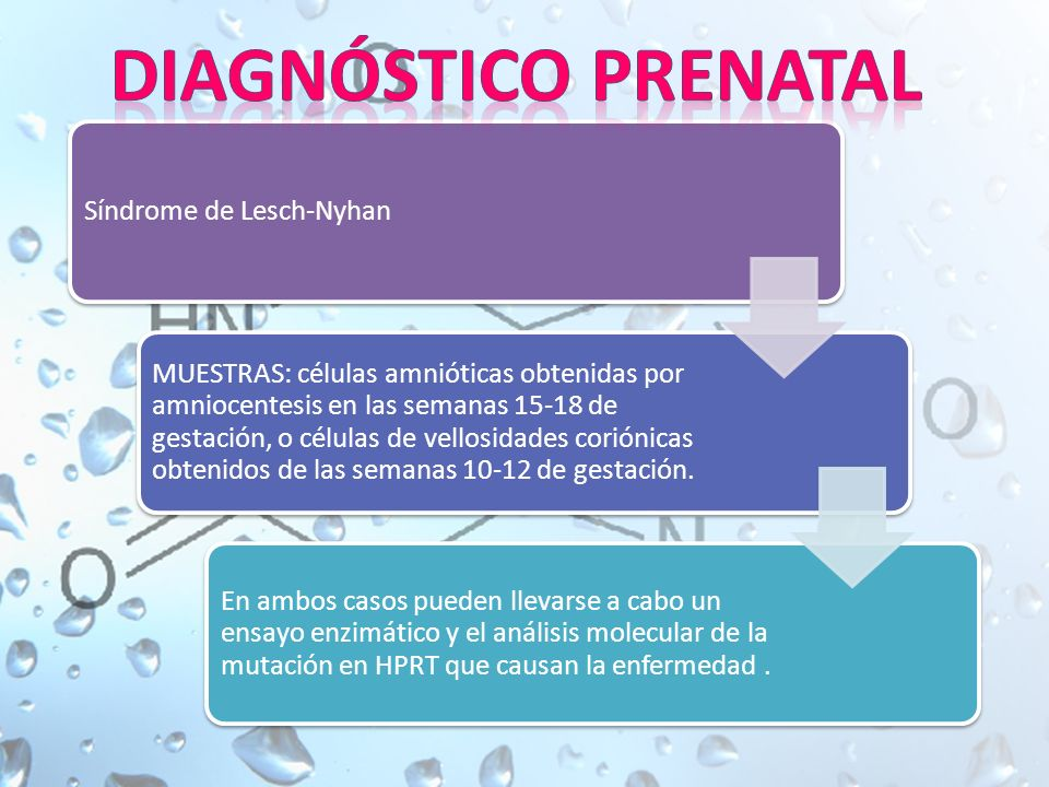 DIAGNÓSTICO PRENATAL Síndrome de Lesch-Nyhan