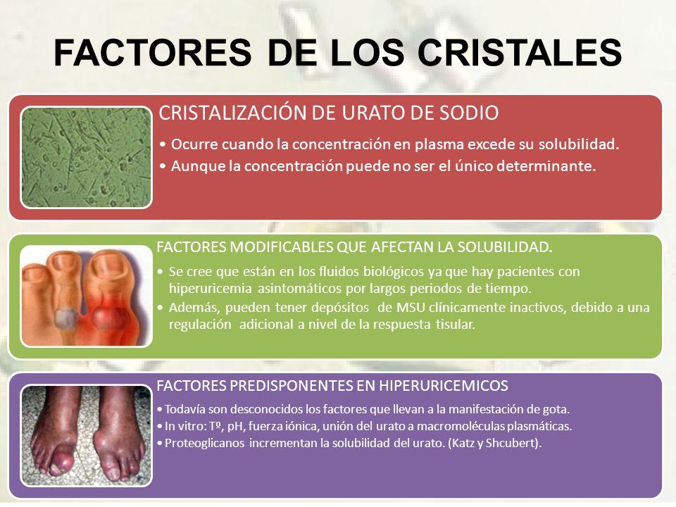 FACTORES DE LOS CRISTALES