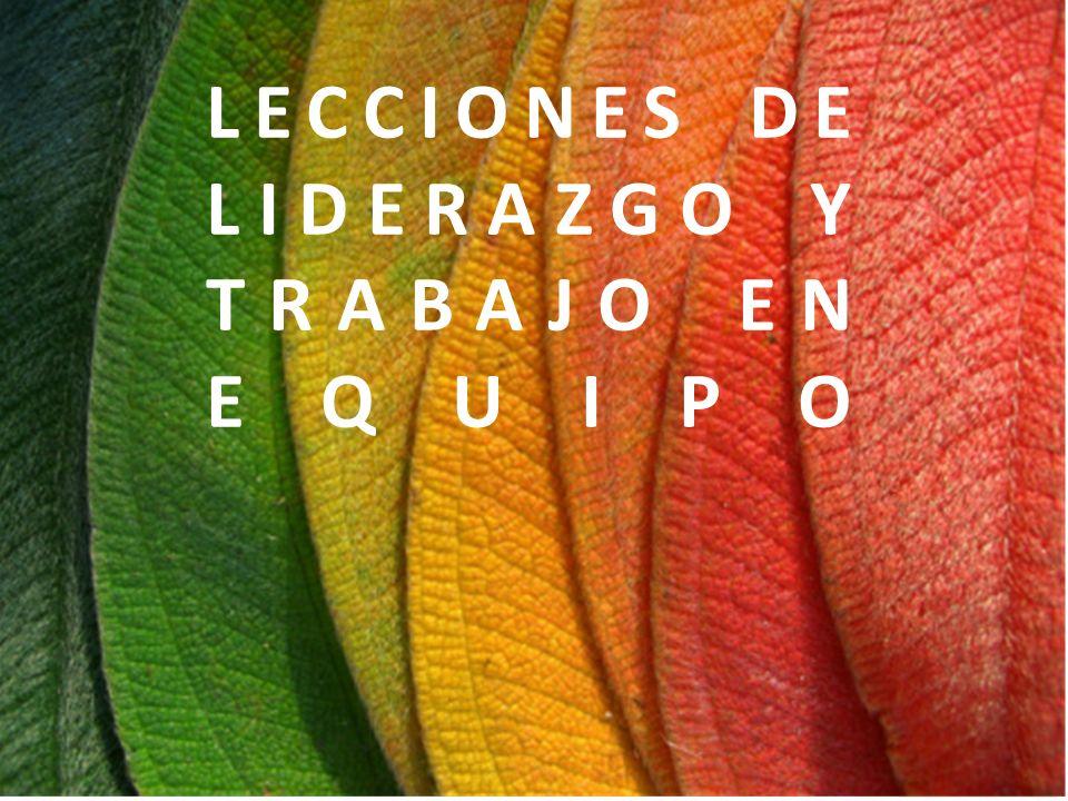 LECCIONES DE LIDERAZGO Y TRABAJO EN EQUIPO