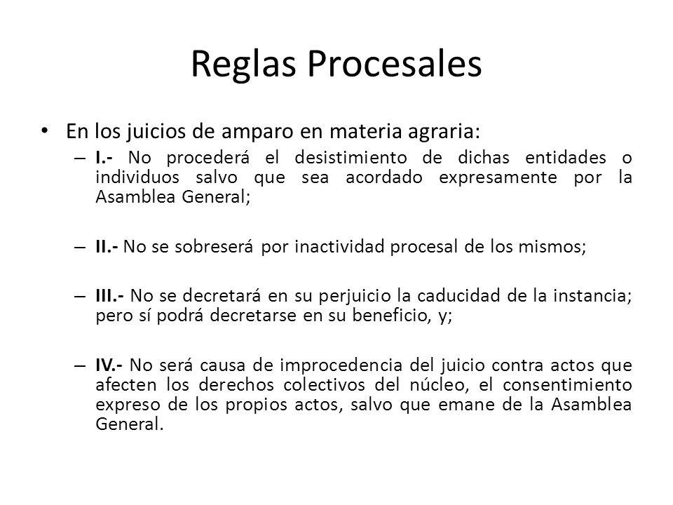 Reglas Procesales En los juicios de amparo en materia agraria: