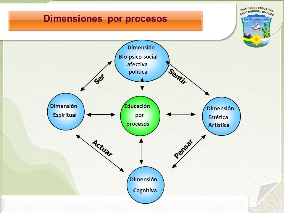 Dimensiones por procesos