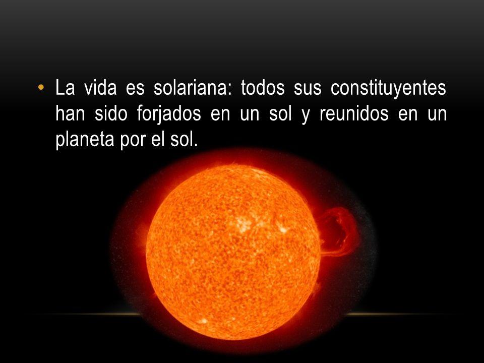 La vida es solariana: todos sus constituyentes han sido forjados en un sol y reunidos en un planeta por el sol.