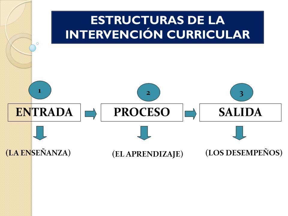 ESTRUCTURAS DE LA INTERVENCIÓN CURRICULAR