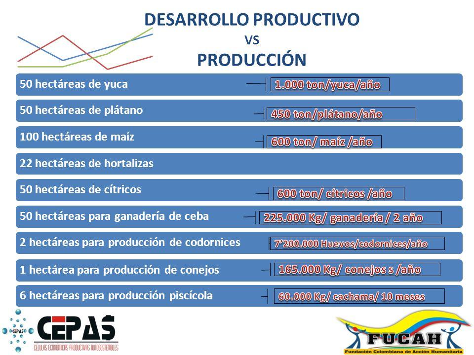 DESARROLLO PRODUCTIVO VS PRODUCCIÓN