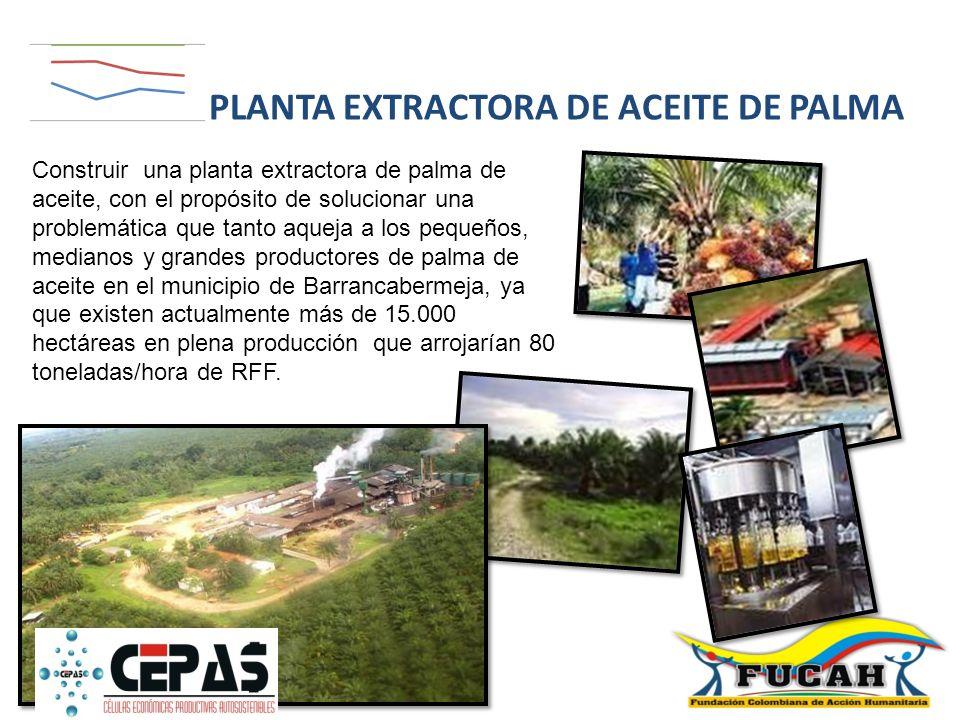 PLANTA EXTRACTORA DE ACEITE DE PALMA
