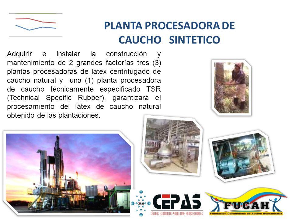 PLANTA PROCESADORA DE CAUCHO SINTETICO