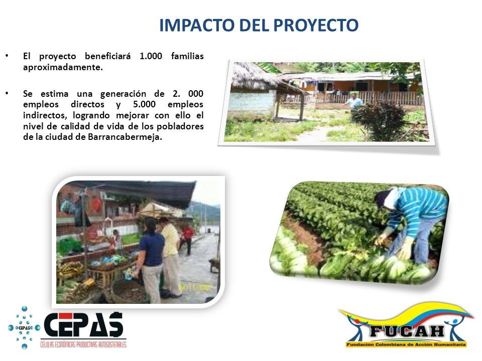 IMPACTO DEL PROYECTO El proyecto beneficiará 1.000 familias aproximadamente.
