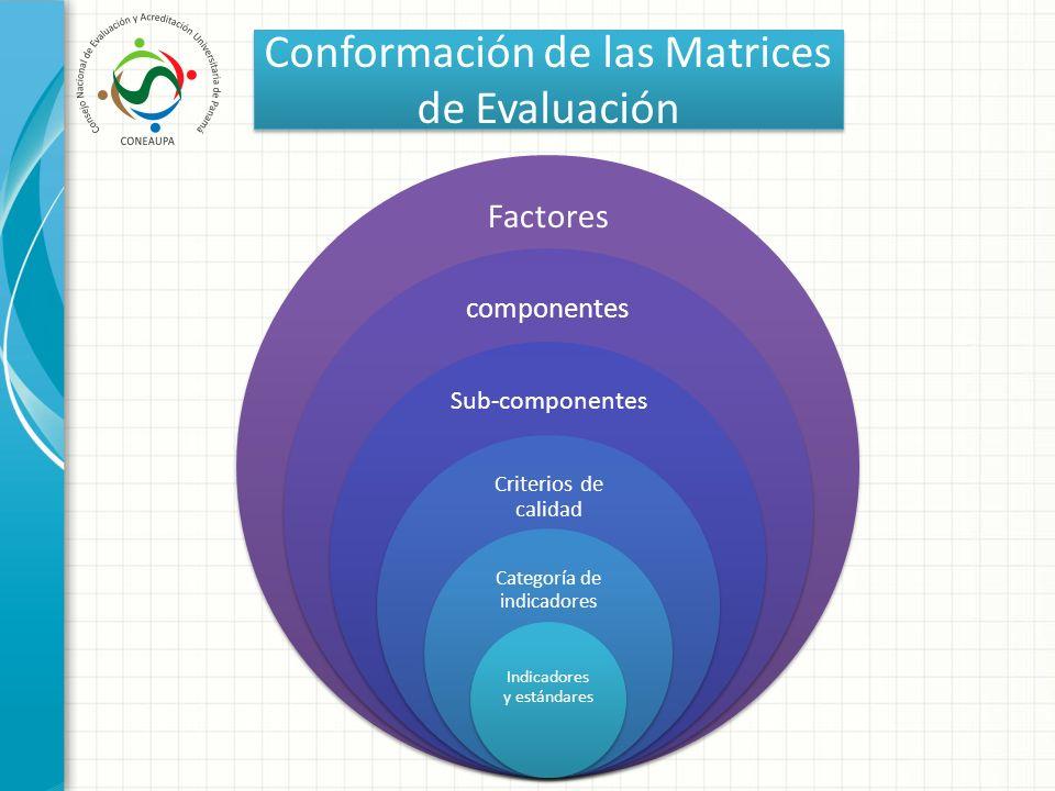 Conformación de las Matrices de Evaluación