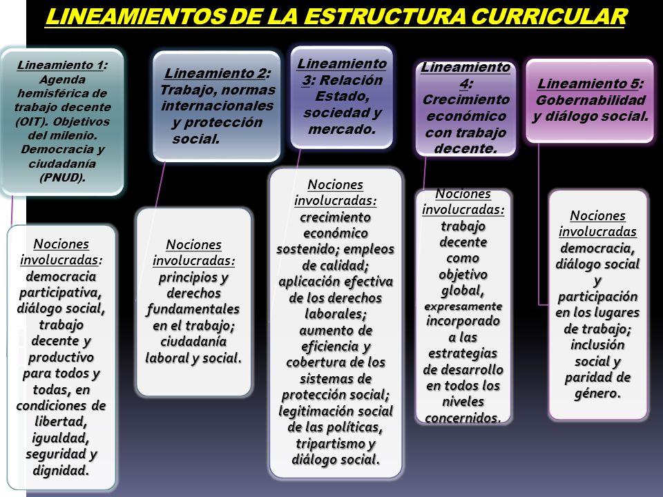 LINEAMIENTOS DE LA ESTRUCTURA CURRICULAR