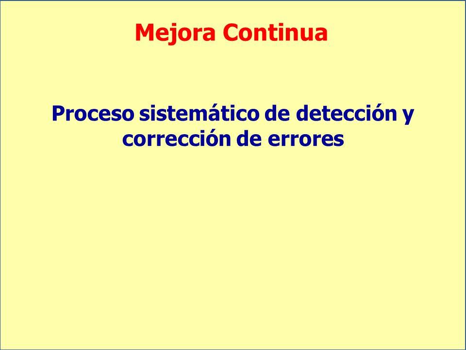 Proceso sistemático de detección y corrección de errores