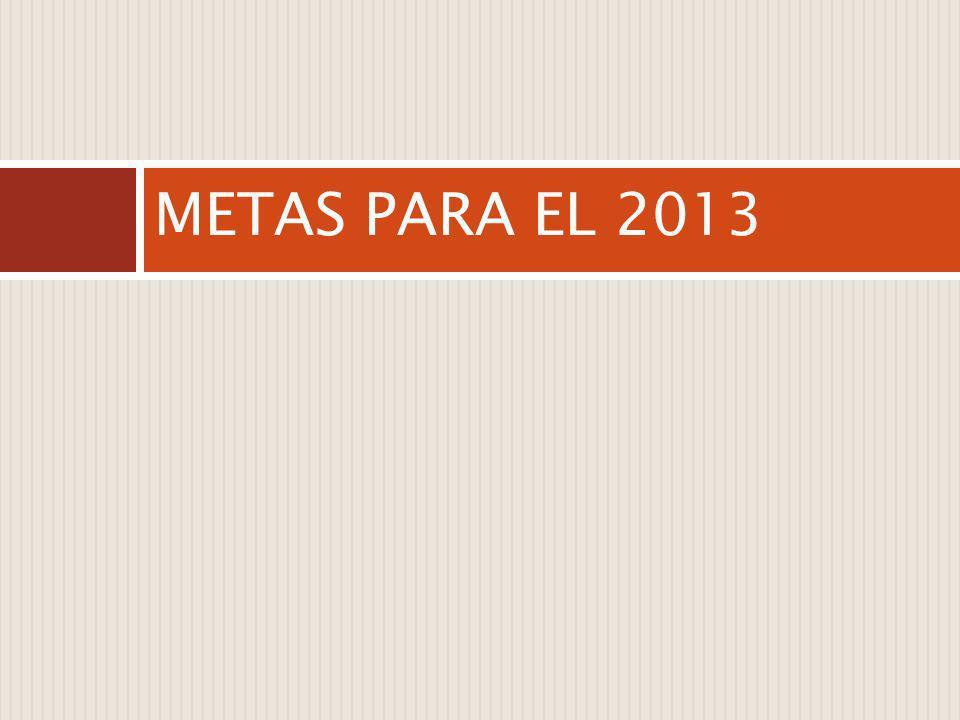 METAS PARA EL 2013