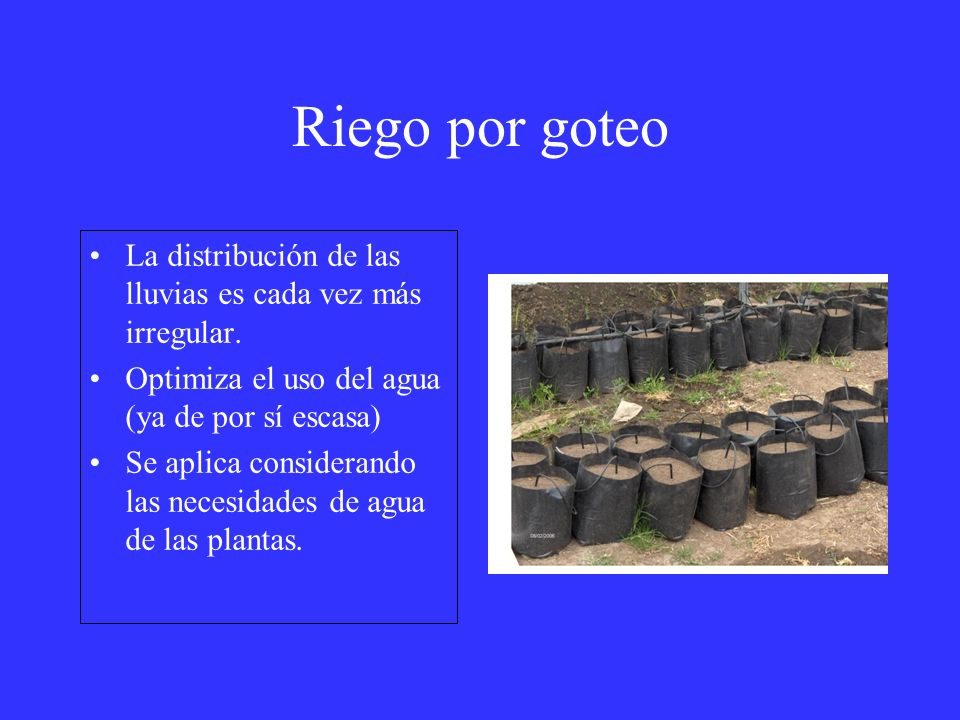 Riego por goteo La distribución de las lluvias es cada vez más irregular. Optimiza el uso del agua (ya de por sí escasa)